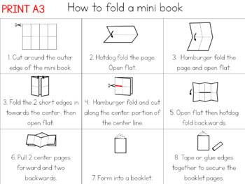 Pumpkin life cycle mini book (simplified version)