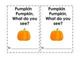 Pumpkin pumpkin, what do you see? The life cycle of a pumpkin.