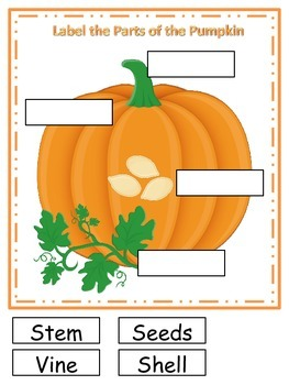 Pumpkin themed What are the Parts preschool learning activity.  Educational.
