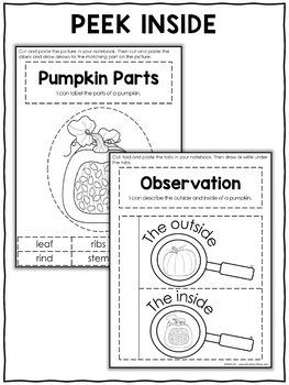 Interactive Notebook - Pumpkin Activities