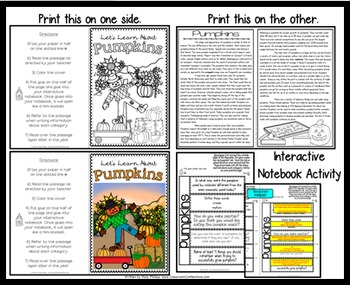 All About Pumpkins: Pumpkins Reading Passage: Perfect for Interactive Notebook