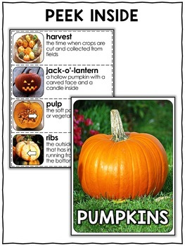 Nonfiction Unit - Pumpkin Activities
