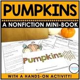 All About Pumpkins Mini Book