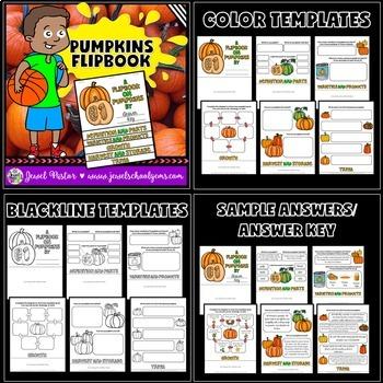 Pumpkins Activities BUNDLE (Pumpkins PowerPoint and Flipbook)