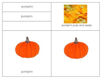 Pumpkins:  Bundle