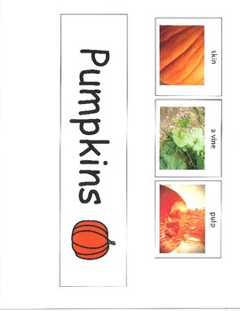 Pumpkins Can Have Are Tree Map