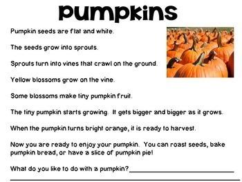 Pumpkins Nonfiction Close Reading & Visual Vocabulary Unit