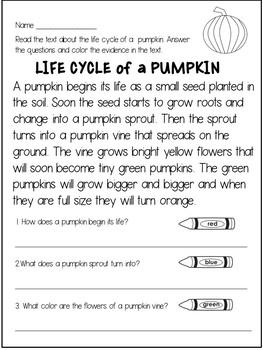 Pumpkins Reading Comprehension Passages