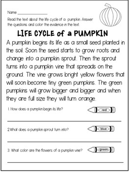 Pumpkin Reading Comprehension Passages and Questions