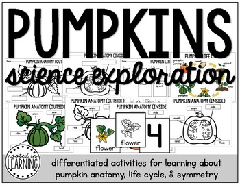 Pumpkins: Differentiated Science and Literacy Activities