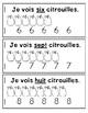 Pumpkins Emergent Reader in French: I See Pumpkins!