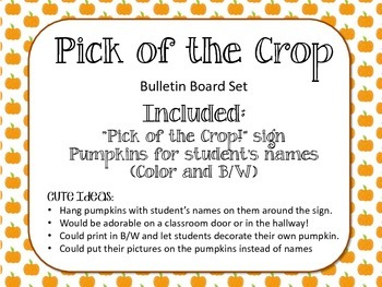 Pumpkins Fall Bulletin Board.  Pick of the Crop.