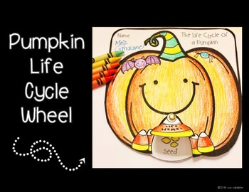 Pumpkins & Gourds Science Activities, Addresses NGSS 2-PS1-1