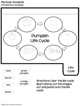 Pumpkins {Interactive Notebook, Life Cycle of a Pumpkin Posters}