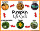 Pumpkin Investigation Unit  (Pumpkin Life Cycle) includes posters