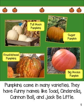 Pumpkins Main Topic and Details R.I.2 Nonfiction Reader and Interactive Notebook