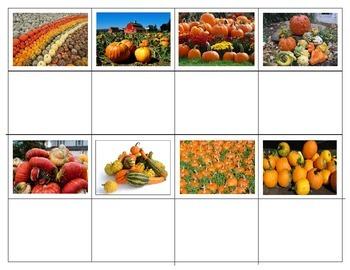Pumpkins:  Mini Matching Cards