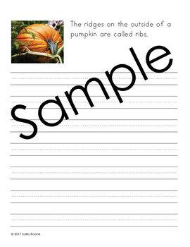Pumpkins - Copywork - Print - Handwriting