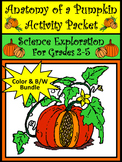 Halloween Activities: Anatomy of a Pumpkin Activity Packet Bundle - Color & B/W