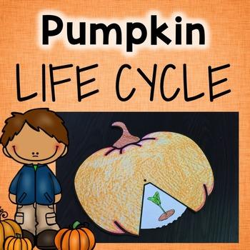 Pumpkins Life Cycle Craft
