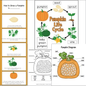 Pumpkin Unit {CCSS Integrated Math, ELA, Reading, Writing, Science}