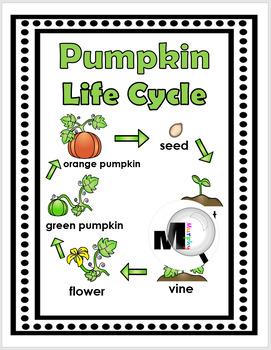 Pumpkin Life Cycle Science, Literacy & Math -Pumpkin Activity-Fall Activity Unit
