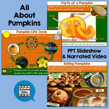 Pumpkins Unit with PowerPoint, Activities, and Video