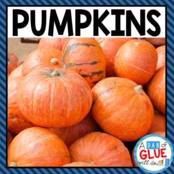 Pumpkins: Science and Math