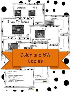 Pumpkins Senses Interactive Book and Song