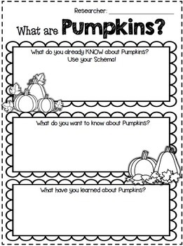Pumpkins by 1st Grade is WienerFUL   Teachers Pay Teachers