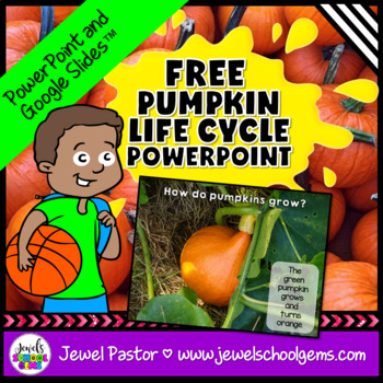 Pumpkins Science Activities FREE (Pumpkin Life Cycle PowerPoint)