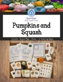 Pumpkins and Squash Identification Set