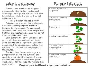 Pumpkins! non-fiction minibook