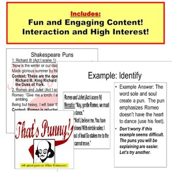 Pun PowerPoint : Lessons and Fun!