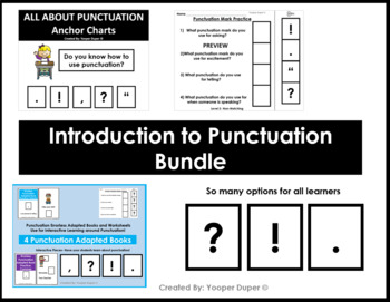 Punctuation Grammar Bundle (Adapted Book and Posters)