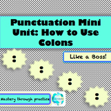 Punctuation Mini Unit: Colons (PowerPoint + packet w/ prac
