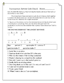 Punctuation Review Code Sleuth