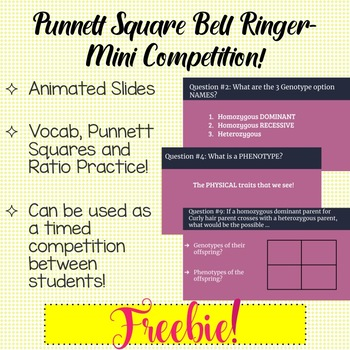 Punnett Square Bell Ringer Slides