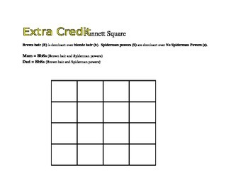 Punnett Square Extra Credit Assignment - Dihybrid Cross | TpT