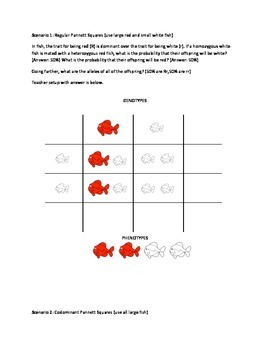 Punnett Square Fishes Extravaganza - Regular, Incomplete,