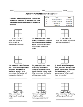 Punnett Square Generator Worksheet by Haney Science | TpT