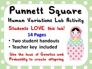 Punnett Square Human Variations Lab Activity