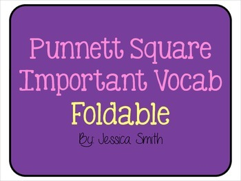Punnett Square Important Vocabulary Foldable FREEBIE