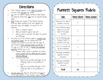 Punnett Square Interactive Notebook Reference Guide