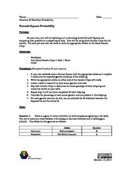 Punnett Square Lab (Notebook)