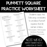 Punnett Square Practice - Applying Vocabulary