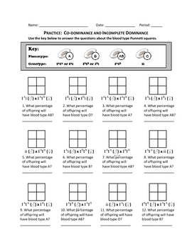 punnett square practice co by haney science teachers pay teachers. Black Bedroom Furniture Sets. Home Design Ideas