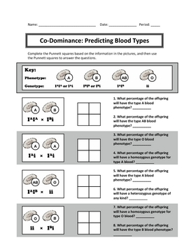 Punnett Square Practice: Codominance and Incomplete Dominance by ...