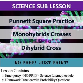 Punnett Square Practice - Homework or Sub