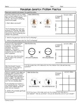 punnett square practice problems worksheet resultinfos. Black Bedroom Furniture Sets. Home Design Ideas